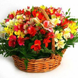 Купить цветы в омске дешево
